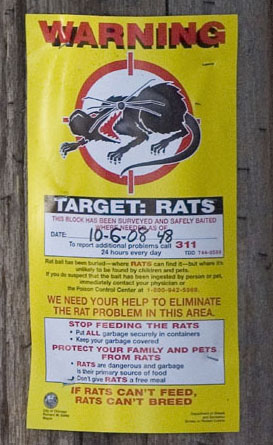 rat_sign_pole