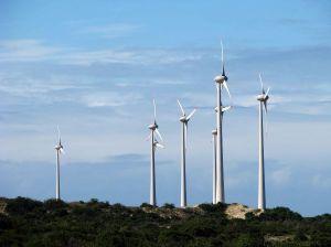 windmill_farm