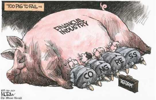 Too-Big-Pig-to-Fail-Morin-Miami-Herald