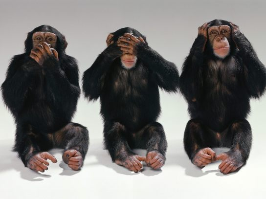 See-no-evil-hear-no-evil-speak-no-evil-monkeys-