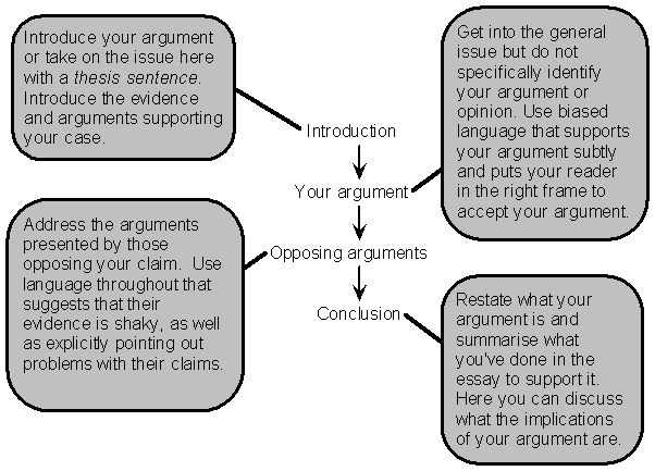 Argumentative Essay Structure Example