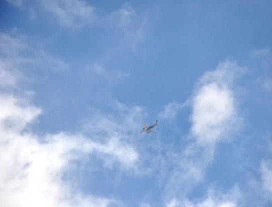 the_plane