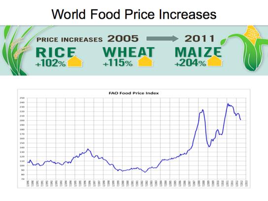 worldfoodpriceincreases