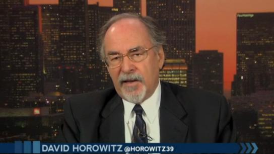 David-Horowitz