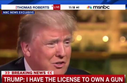 Donald-Trump-Guns