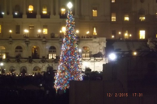 congress christmas tree